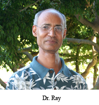 Dr. Ray